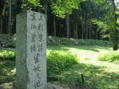 坂戸城跡.jpeg
