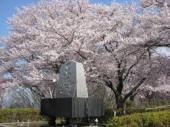 天童公園(舞鶴山).jpeg