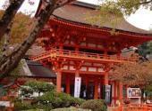 賀茂別雷神社.jpeg